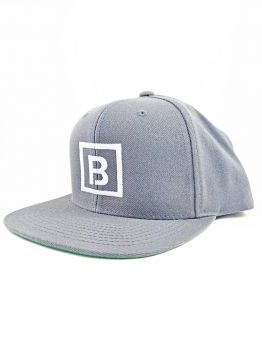 Bombing Science Snapback (Squared) - Silver