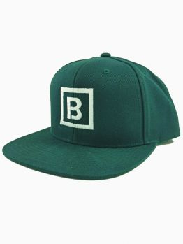 Bombing Science Snapback (Squared) - Spruce Green